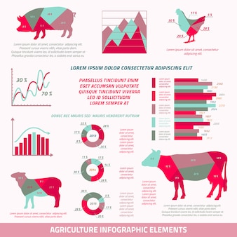 Elementos de design plano de infográficos de agricultura de ovelhas de porco de vaca de gado de gado e ilustração vetorial de gráfico