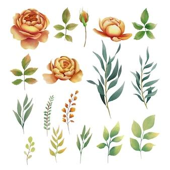 Elementos de flores e folhas em estilo aquarela
