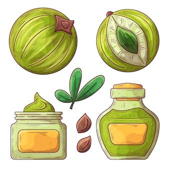 Elementos de frutas amla de design plano orgânico