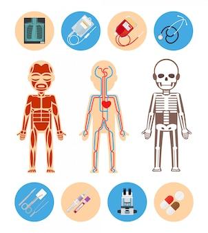 Elementos de infográficos médicos