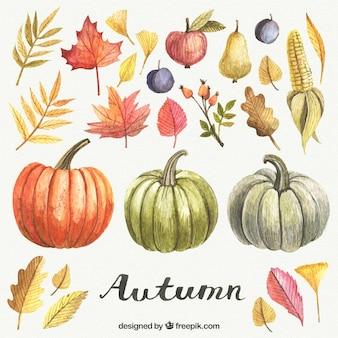 Elementos de outono pintadas à mão