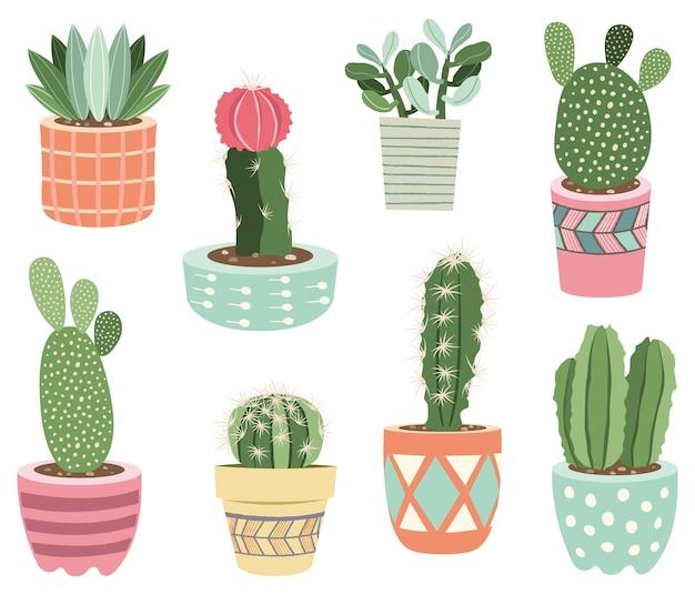 Elementos de plantas em vasos de cactos