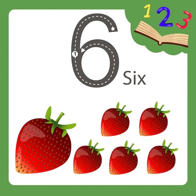 Elementos de seis números de morango
