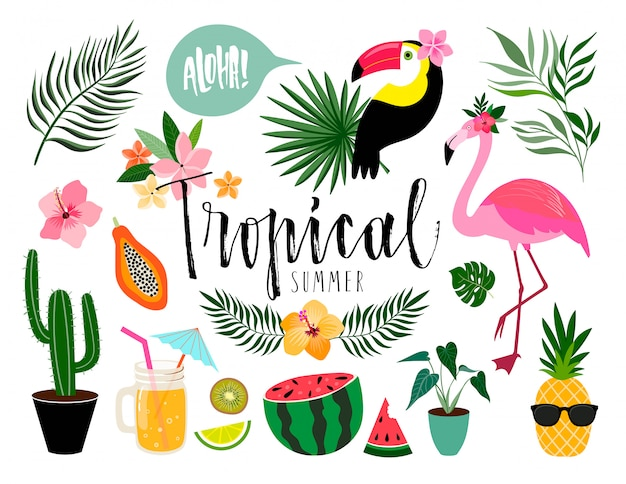 Elementos de verão tropical, coleção de mão desenhada com itens diferentes isolados