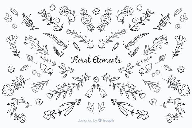 Elementos decorativos florais desenhados a mão incolor