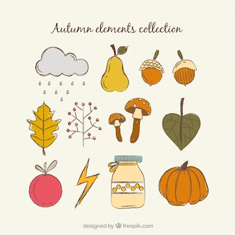 Elementos desenhados mão bonitas do outono