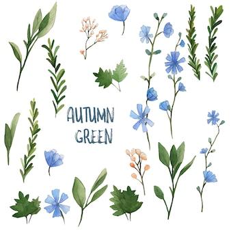Elementos em aquarela de ervas verdes