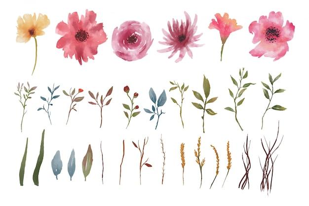 Elementos em aquarela de flores e folhas