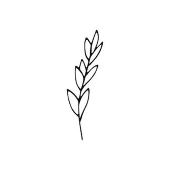 Elementos florais de giro mão única desenhada. ilustração em vetor doodle para design de casamento, logotipo e cartão de felicitações.