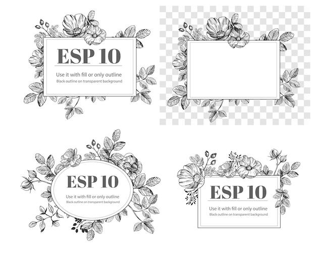 Elementos florais de mão desenhada. conjunto de flores. ilustração em vetor rosa mosqueta. contorno preto