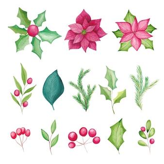 Elementos florais de natal em aquarela, flores de poinsétia, frutas, folhas, galhos de pinheiros