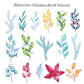 Elementos florais de natal em aquarela