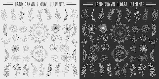 Elementos florais desenhados a mão