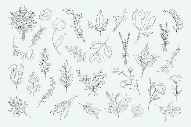 Elementos florais e botânicos de line art
