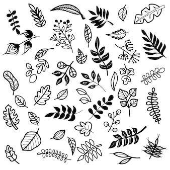 Elementos florais e de folhas desenhados à mão