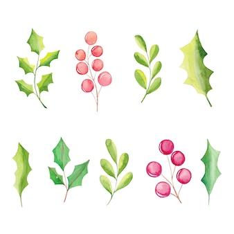 Elementos florais em aquarela, flores de poinsétia, bagas, folhas, galhos de pinheiros