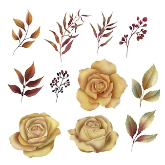 Elementos florais em aquarela