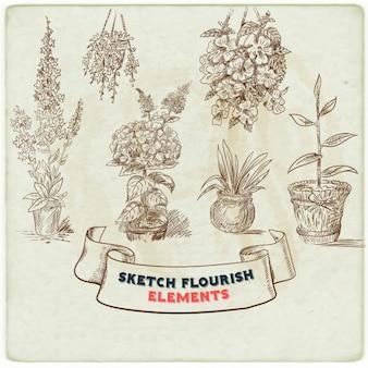 Elementos florais esboçados