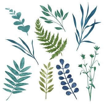 Elementos florais selvagens, ervas, flores e folhas