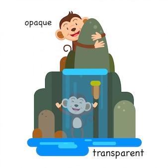 Em frente à ilustração transparente e opaca
