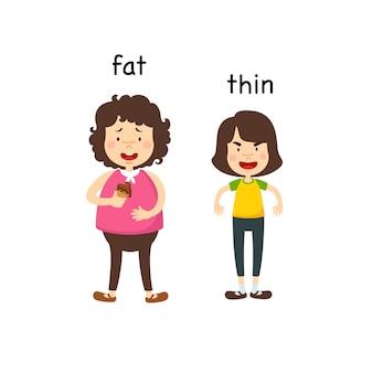 Em frente à ilustração vetorial de gordura e fina