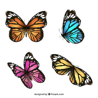 Embalagem bonita de quatro borboletas coloridas