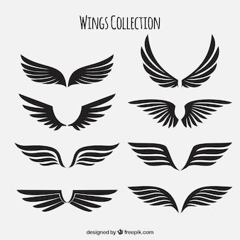 Embalagem de asas pretas