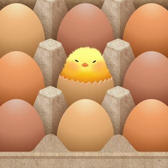 Embalagem de papel caixa de ovo projetada com ilustração de ovos