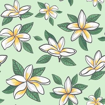 Embalagem de teste padrão de flor de jasmim