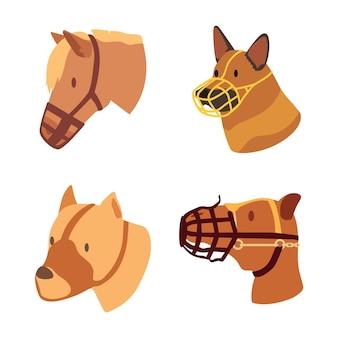 Embalagem para cães de focinho achatado