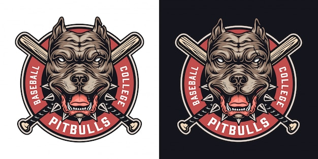 Emblema colorido de time de beisebol