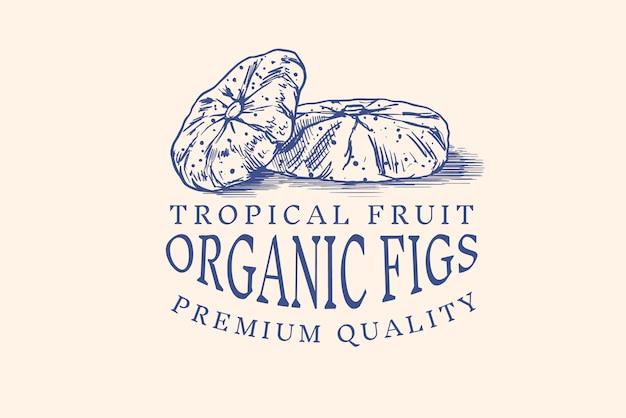 Emblema de figo fresco. rótulo ou logotipo da folha de frutas secas. corte em pedaços. tempero de desintoxicação.