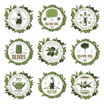 Emblemas de azeitona coloridos vintage com inscrições frascos de galhos de árvores garrafa de azeite extra virgem