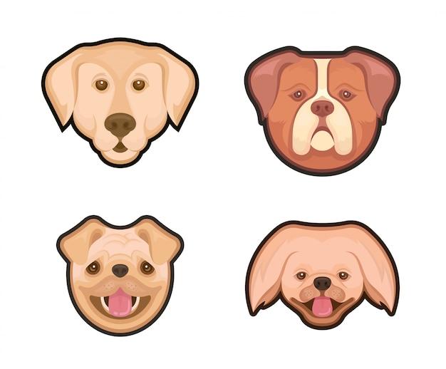 Emblemas de coleção de cães