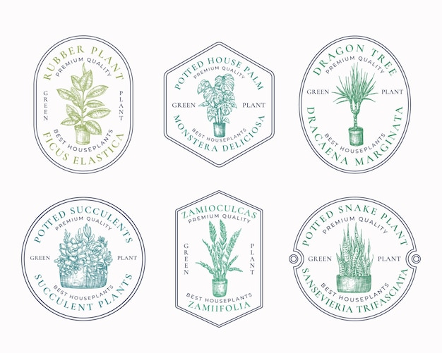 Emblemas de plantas de casa ou modelo de logotipo