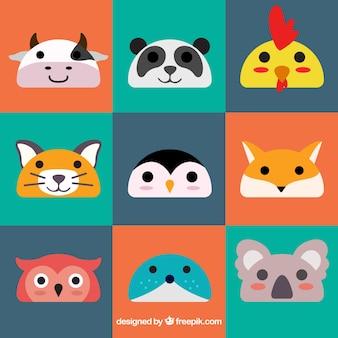 Emoticons animais coloridos
