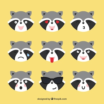 Emoticons de guaxinim com diferentes expressões faciais
