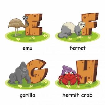 Emu furão gorila eremita caranguejo alfabeto madeira animais