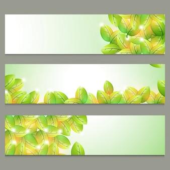 Encabeçamentos do site da natureza com folhas brilhantes.