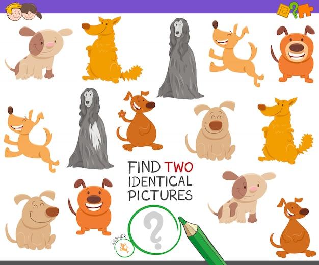 Encontrando dois jogos de fotos idênticos para crianças