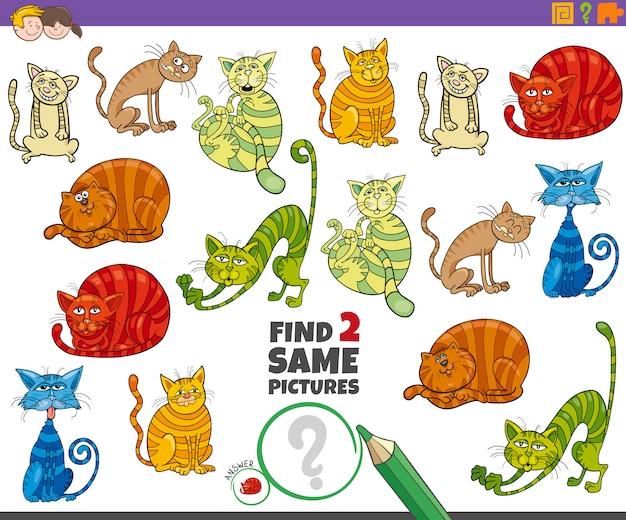 Encontre a mesma tarefa educacional de dois gatos para crianças