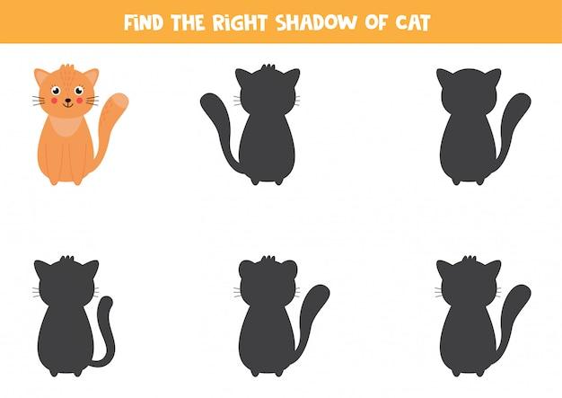 Encontre a sombra certa do gato bonito dos desenhos animados.