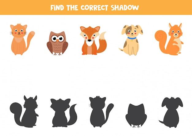 Encontre a sombra certa dos animais. jogo de correspondência para crianças.