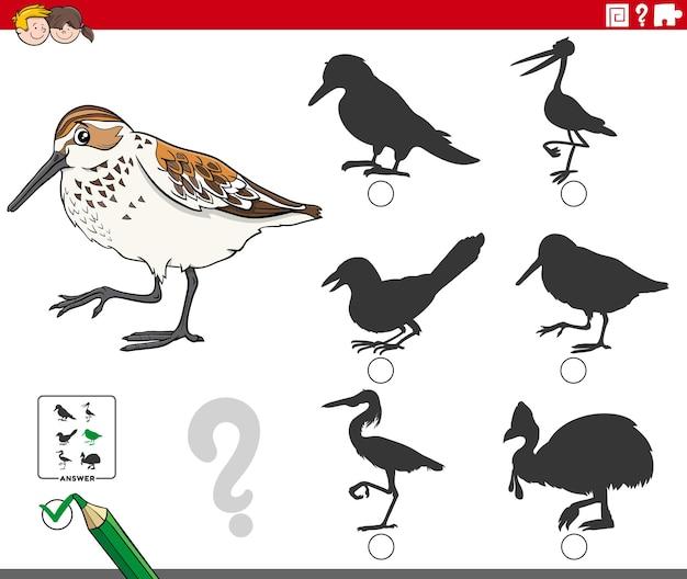 Encontre a sombra certa para o jogo para crianças com o pássaro maçarico ocidental