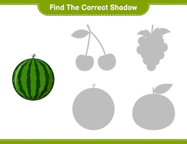 Encontre a sombra correta. encontre e combine a sombra correta de melancia. jogo educativo para crianças, planilha para impressão