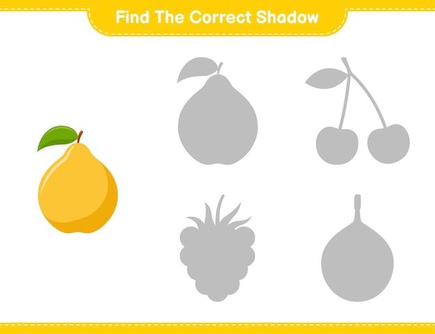 Encontre a sombra correta. encontre e combine a sombra correta de quince. jogo educativo para crianças, planilha para impressão