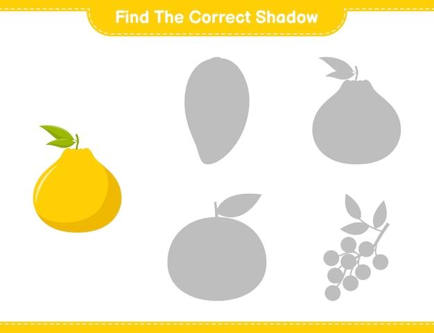 Encontre a sombra correta. encontre e combine a sombra correta de ugli. jogo educativo para crianças, planilha para impressão