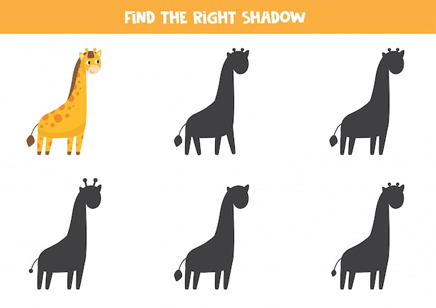 Encontre a sombra correta. girafa engraçada bonita.