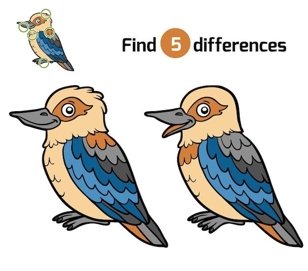 Encontre diferenças, jogo de educação para crianças, kookaburra