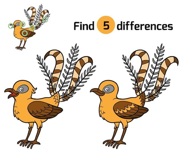 Encontre diferenças, jogo de educação para crianças, lyrebird